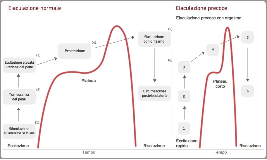 diminuzione dellerezione eiaculazione precoce