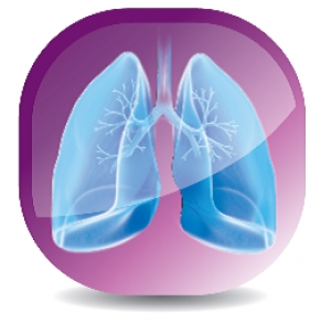 Seminario Lung Protection